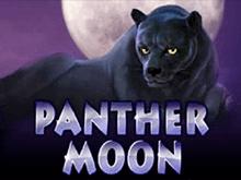 Panther Moon – виртуальный игровой аппарат и азартная охота
