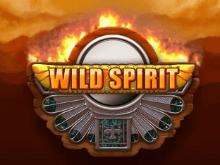 Автомат Wild Spirit — популярный индейский игровой слот